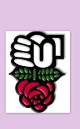 «Saint Etienne Demain»: des roses et des orties !